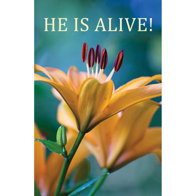 He's Alive (Pack Of 25)(Booklets)