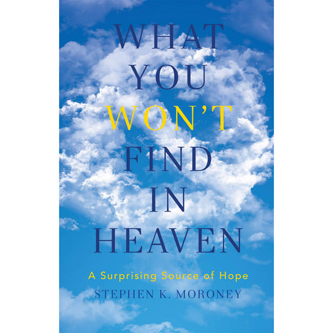 What You Wont Find In Heaven (Paperback)