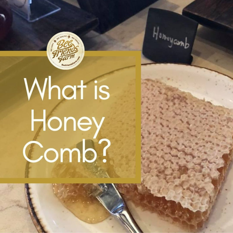 What's the difference between raw honey and regular honey? | Bee Friends Farm