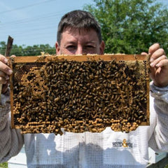Adopt a Honey Bee Hive - Bee Friends Farm
