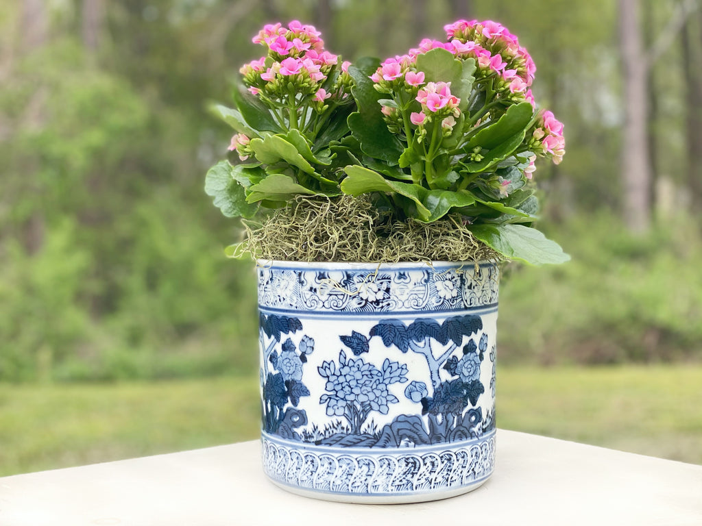 Blue & White Blossom Planter