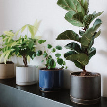 Load image into Gallery viewer, HASAMI PORCELAIN</br> Planter Set / Large