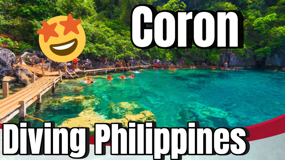 Coron - Diving, World War 2 Ships and Coral Reefs