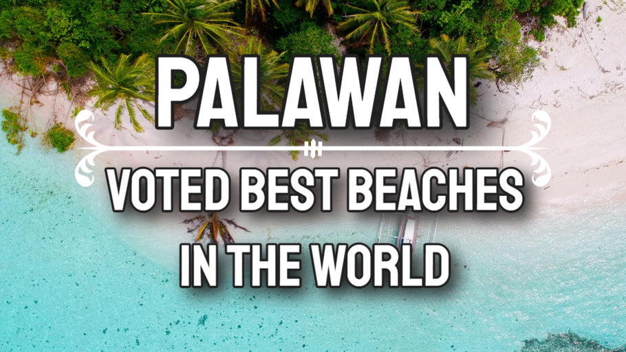 Palawan Philippines - White Sand and Clear Water - Voted Best Beaches in the World