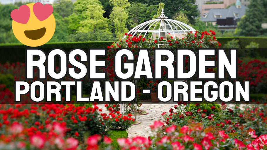 Rose Garden and Old Witch House - Exploring Parks in Portland