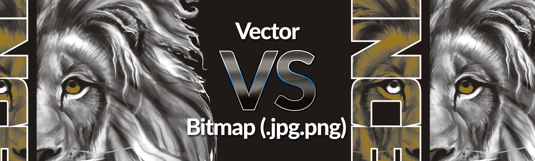 What is a Vector image?