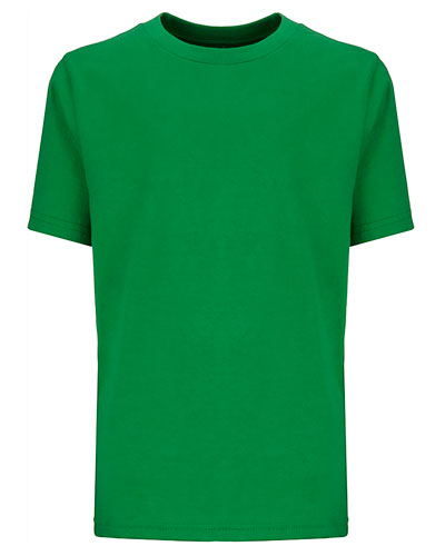 Kelly Green Custom Next Level Youth Boys' Cotton Crew