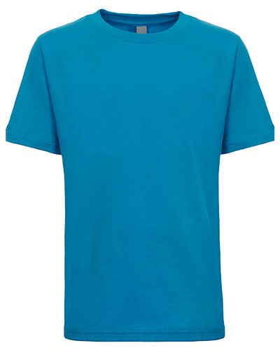 Turquoise Custom Next Level Youth Boys' Cotton Crew