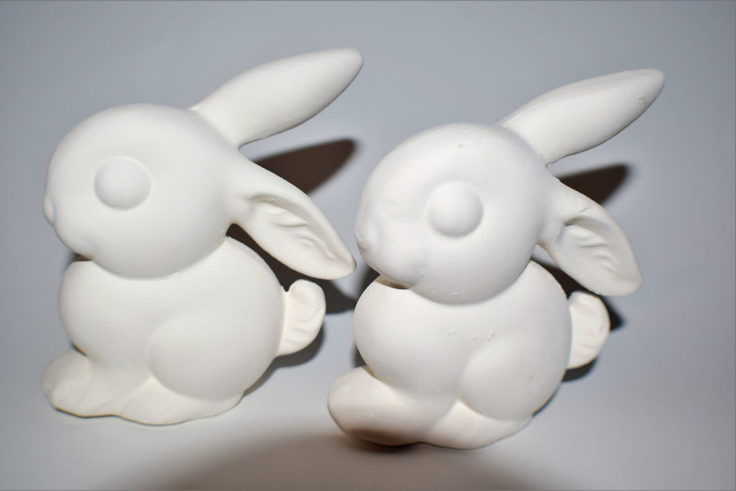 Two Bunny Ready to Paint