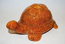 Load image into Gallery viewer, Turtle Model # 1