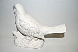 Ceramic Bisque large Bird.ready-to-Paint