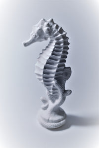 Small Seahorse Ready to Paint