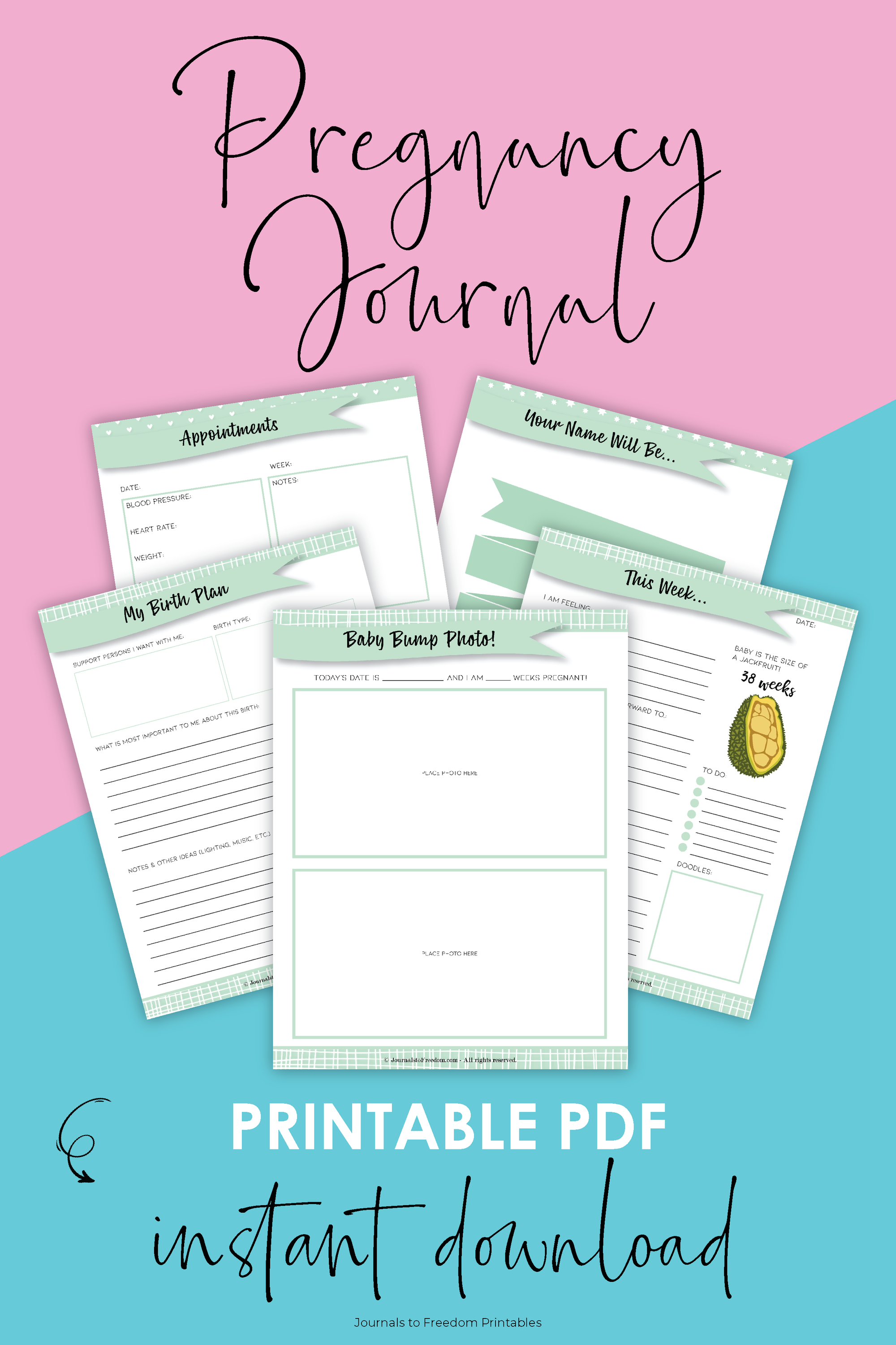 Printable Pregnancy Journal