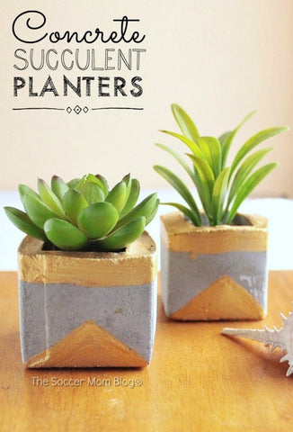 Gold and Concrete Succulent Planters from the Soccer Mom Blog