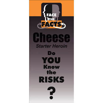 Face the Facts Drug Prevention Pamphlet   Cheese 25 pack