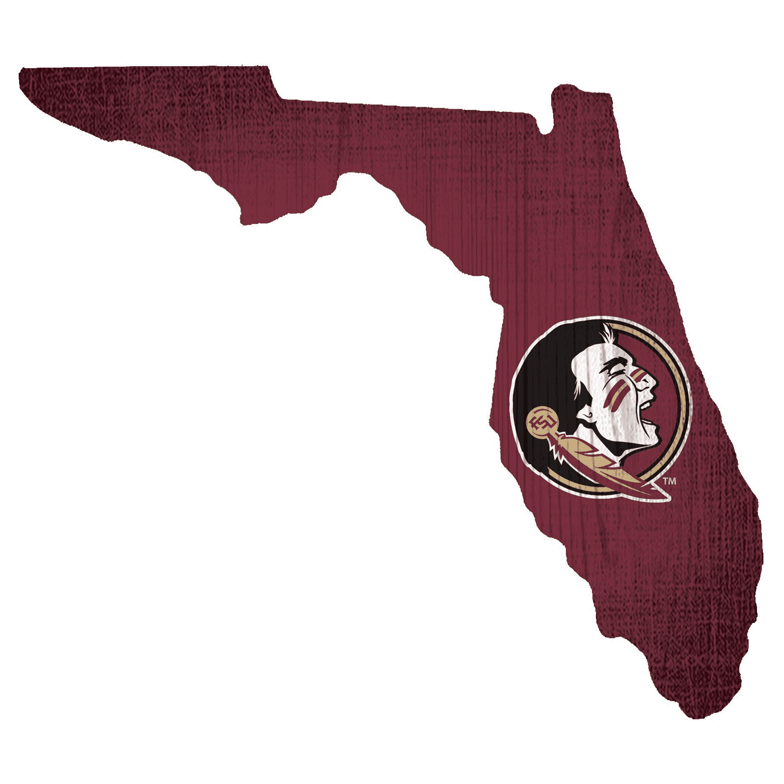 Florida State Seminoles State Team Color Logo Sign
