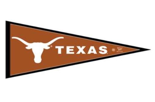 Texas Longhorns Pennant Flag
