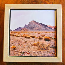 Load image into Gallery viewer, Collecting Rocks In The Desert