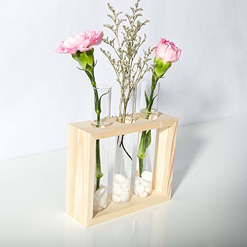 ... Mkono Wall Hanging Planter Test Tube Flower Bud Vase with Wood Stand ... : test tube flower vases - startupinsights.org