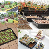 Seedling Starter Trays Seed Planting Growing Propagation Trays Plant Germination Kit Humidity Dome With 20 Pieces Square Seed Starter Pots