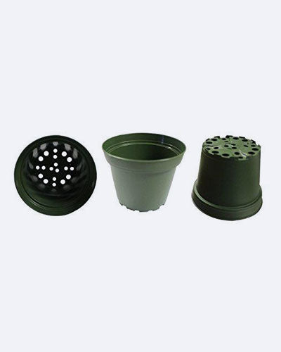 "9GreenBox.com New 30 of 4"" Inch Plastic Pots for Plants, Cuttings & Seedlings Azalea Pots"