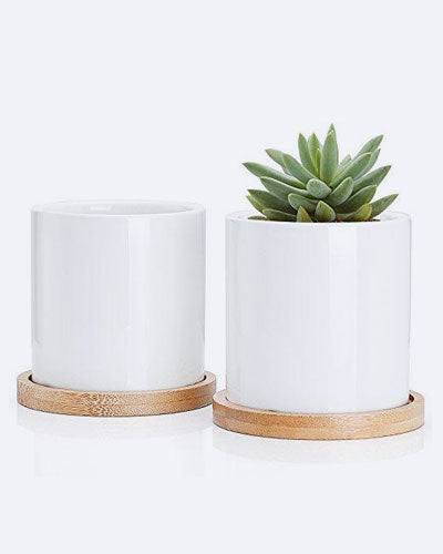Greenaholics Succulent Plant Pots - 3 Inch Ceramic Cylindrical Containers, Small Cactus Planters, Flower Pots with Drainage Hole, Bamboo Tray