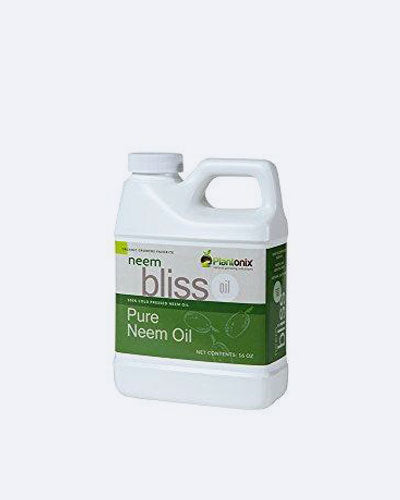 Organic Neem Bliss 100% Pure Cold Pressed Neem Seed Oil