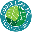 Fiddle Leaf Fig Plant Resource