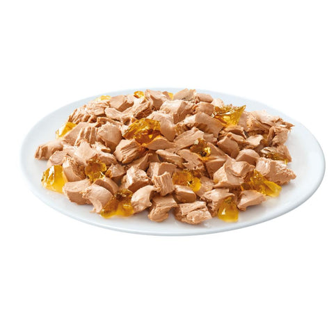 Image of Whiskas Kitten Casserole Fish Selection Jelly 85g, with salmon, tuna, coley and white fish flavors available at allaboutpets.pk
