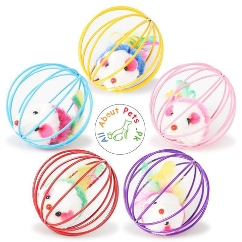Cat Toy Wire Ball Cage Fur Mouse multi color available at allaboutpets.pk in Pakistan