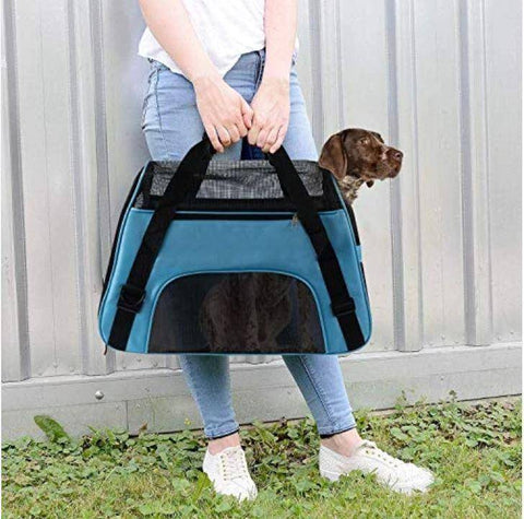 Image of Pet Carrier Bag blue, blue bag, dog carry bag, cat carry bag, bird carry bag, allaboutpets.pk in pakistan.