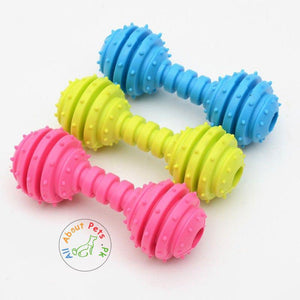 Pet Teether Chew Toy Small Dumbbell With Bells Inside blue, green and pink color available at allaboutpets.pk in Pakistan