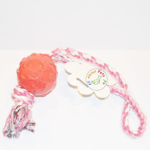Puppy Teether Rope Toy With red Plastic Ball bone print available at allaboutpets.pk in Pakistan