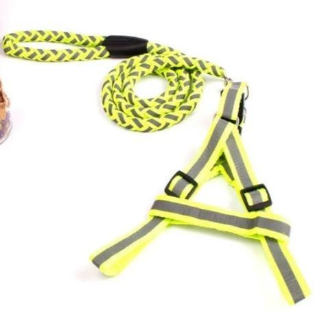 Reflective Harness & Lead For Dogs florescent green color available at allaboutpets.pk in pakistan.