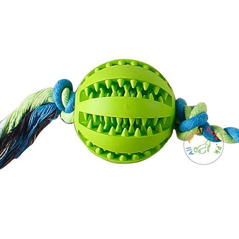 Image of green Rubber Treat Ball with Rope for dogs available at allaboutpets.pk in Pakistan