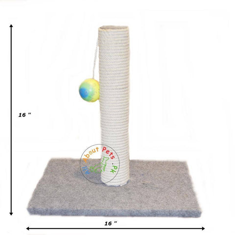 Cat Scratch Post With Ball available in pakistan at allaboutpets.pk
