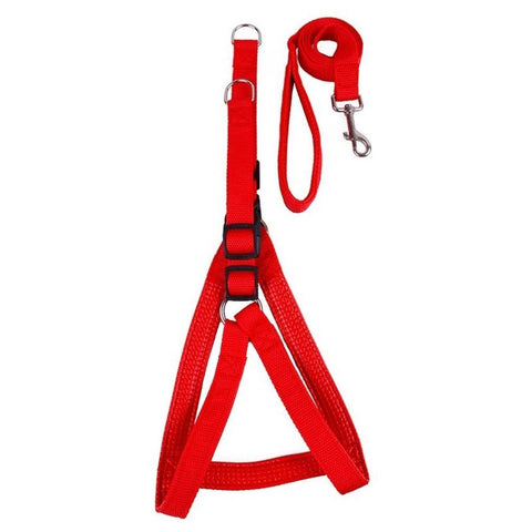 Image of nylon padded Dog Harness Vest Strap With Leash in red color available online in pakistan at allaboutpets.pk