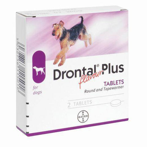 Drontal Plus for dogs, Round and Tapewormer prevents gastrointestinal worms: roundworm, hookworm, whipworm and tapeworm (including hydatid tapeworm) available at allaboutpets.pk in pakistan