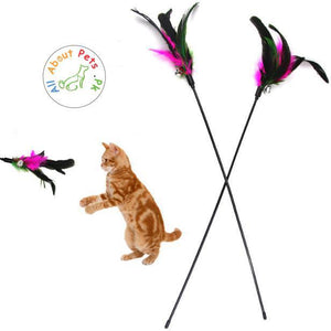 Long Feather Cat Play Rod Teaser Toy 50cm available at allaboutpets.pk in Pakistan