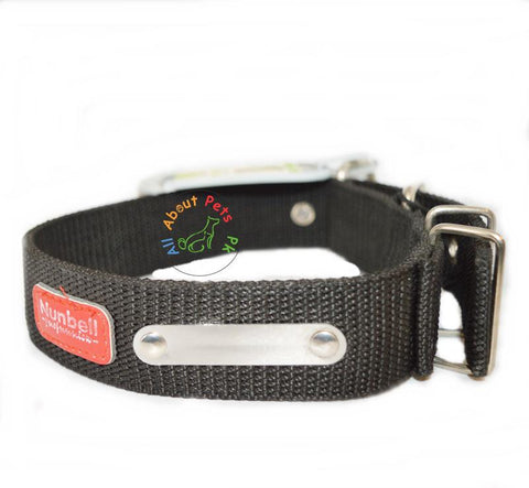 Image of Nunbell Extra Strong Nylon Dog Collar available at allaboutpets.pk in Pakistan