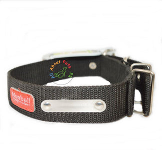 Nunbell Extra Strong Nylon Dog Collar available at allaboutpets.pk in Pakistan