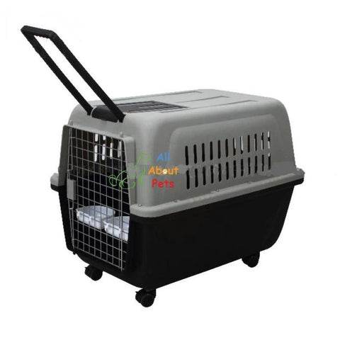 Jetbox travel box For large dogs, pet carry travel box, cat carry travel box available at allaboutpets.pk in pakistan.