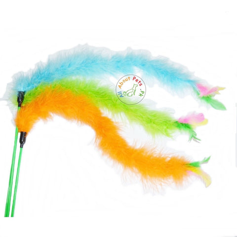 Cat play sticks teaser toy with a feather in assorted colors available at allaboutpets.pk in Pakistan