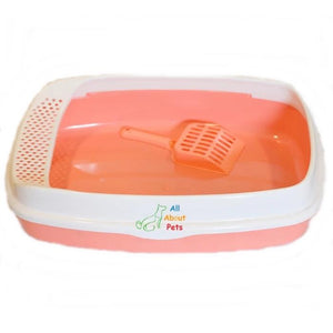 Cat Litter Tray Large, cat potty tray available online at allaboutpets.pk in pakistan.