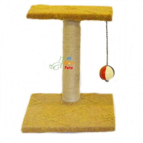 Cat Scratch Post With Ball cat toy available online at allaboutpets.pk in pakistan.