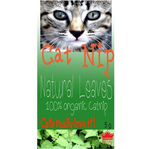 Royal Pets Catnip natural leaves 5g, cat herb available online at allaboutpets.pk in pakistan.