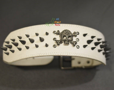 3 Inch Wide Spiked studded Dog Collar White, metal skull studded available at allaboutpets.pk in pakistan.