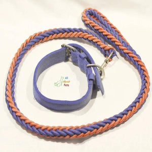 Nylon rope Dog Collar And Leash Set for dogs red & blue available at allaboutpets.pk in pakistan.