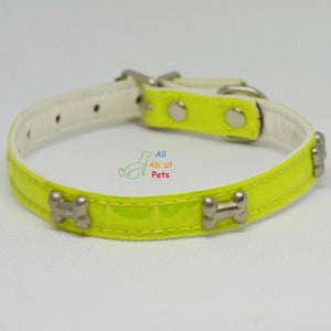 bone shape Studded Reflective Collars for Small Dogs green and yellow color available at allaboutpets.pk in pakistan.
