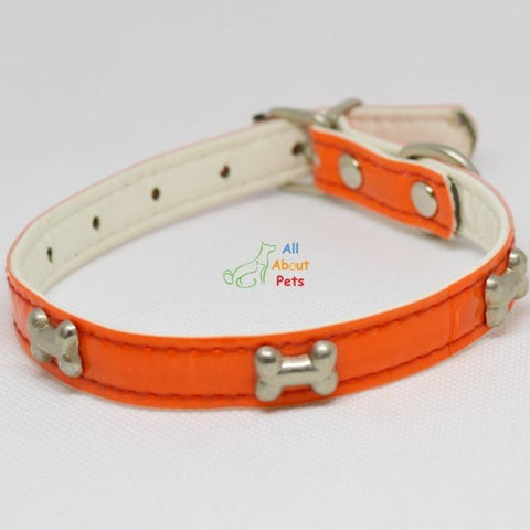 Image of bone shape Studded Reflective Collars for Small Dogs orange color available at allaboutpets.pk in pakistan.